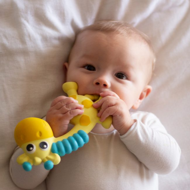 0186970 Squeak and Soothe Natural Teether T2